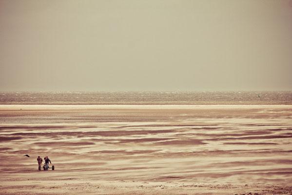 Strandsegler | (c) die Schnappschützen