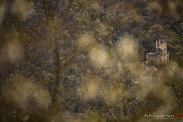 die Landschaft entlang des Rheins #rheintal #weinberge #grünewiesen #unescowelterbe #oberes mittelrheintal | (c) die Schnapschützen
