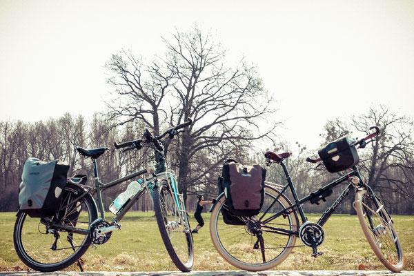 #Elberadweg Nähe Dessau | Reiseblog by (c) die Schnappschützen