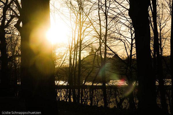 Elberadweg Ankunft Dresden | Reiseblog by (c) die Schnappschützen - März 2014