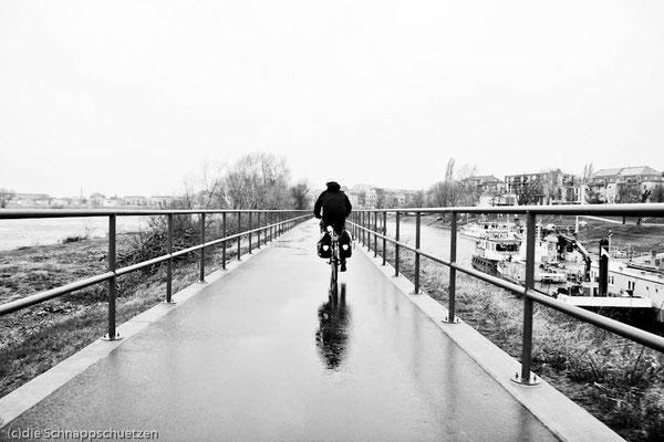 Elberadweg ab Schöna | Reiseblog by (c) die Schnappschützen - Regen und Sturm im März 2014