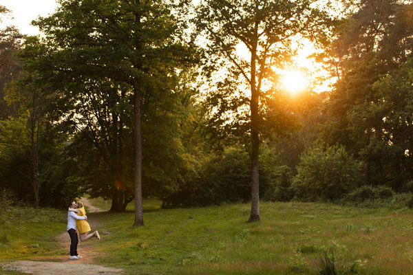 Babybauchshooting   Schwangerschaft   Shooting Wahner Heide   Fotograf Köln   (c) die Schnappschützen