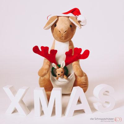 Weihnachts-Känguruh #mamakänguruh #businessfotos #imagefotos #fotografkoeln #mitarbeiterfotos - (c) die Schnappschützen