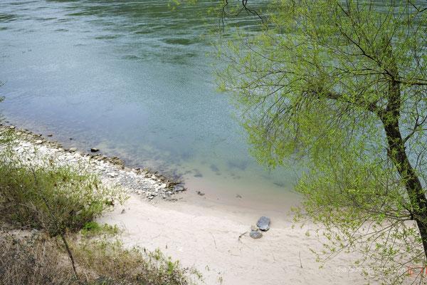 Karibik am Rhein #Sankt Goar #Loreley #Sandstrand #oberes Mittelrheintal #Unesco Welterbe #Rhein #heiratenindeutschland #hochzeitslocations | (c) die Schnappschützen
