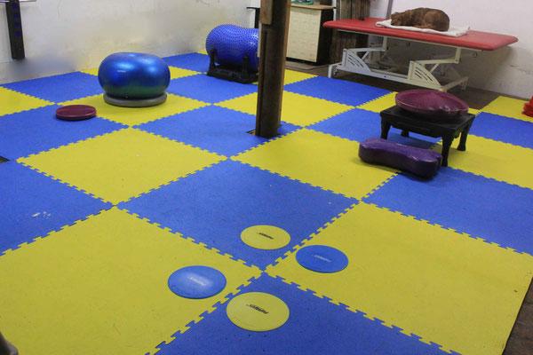 Trainingsraum mit gelenkschonenden Bodenmatten
