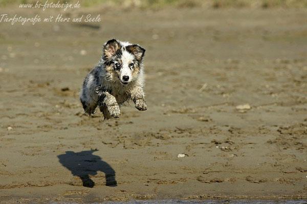Ich kann Fliegen :)