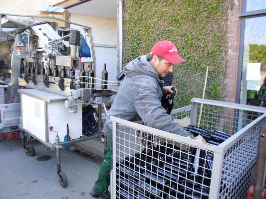 Auch der Chef vom Weingut packt mit an ;)