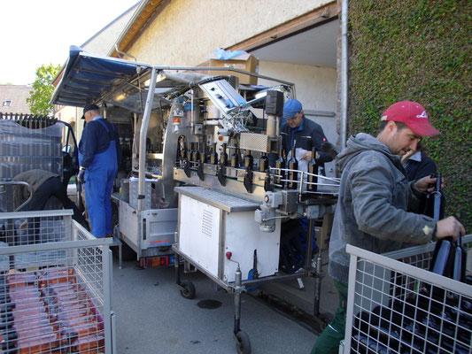 Viele fleißige Helfer, danke an alle die geholfen haben, damit unser leckerer Wein nun auch getrunken werden kann.