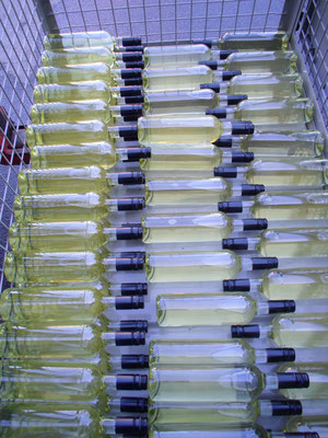 Unser Weißburgunder oder unser Sommerwein - gute Frage, da müsste man jetzt probieren können.