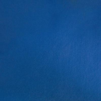 E123 Diep donker blauw