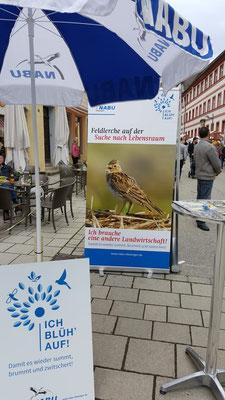 Foto: NABU Ellwangen/Petra Blöchle
