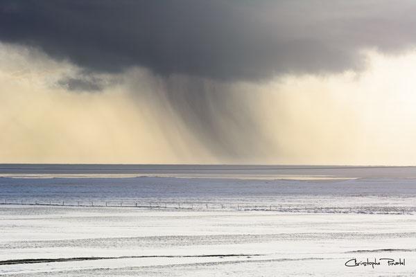 Photo 2 - Bulle climatique