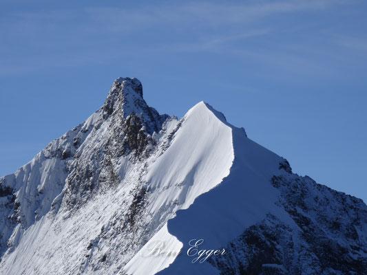 Biancograt mit Piz Bernina