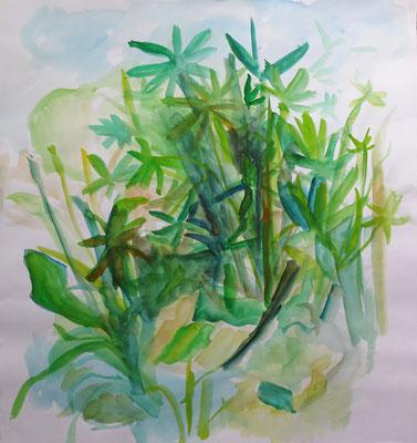 Andrea Hildebrandt_Künstlerin_Malerei_Aquarell_Natur