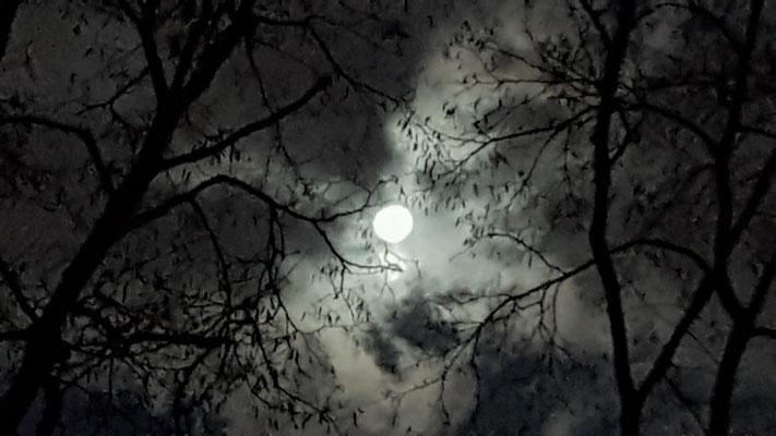Vorabend zur Vollendung des Mondes - Doreen Malinka