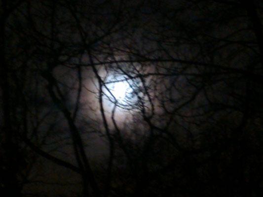 Im Lichte Lunas