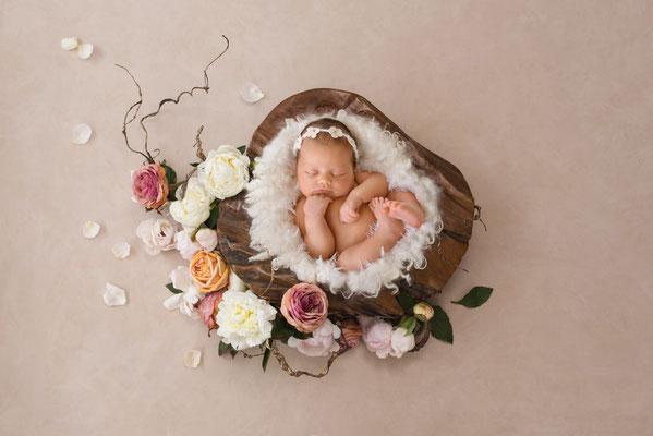 Babyfotograf crailsheim
