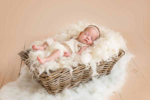 Babyfotograf Dinkelsbühl
