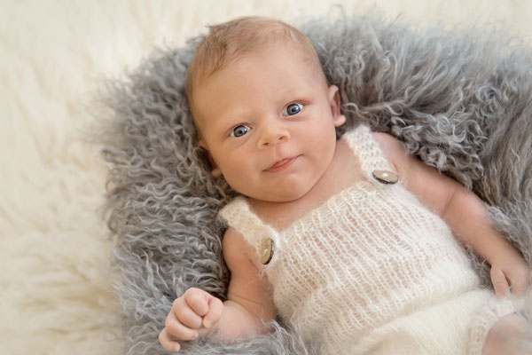 Babyfotograf Nördlingen