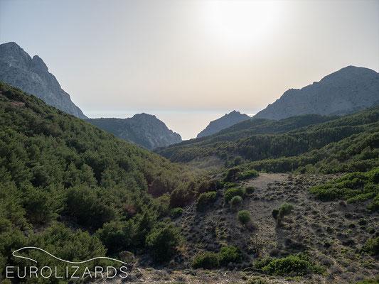 Wild Karpathos