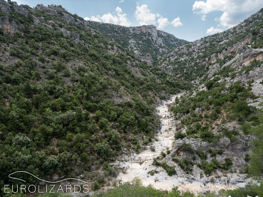 Dry Agiorgitiko river