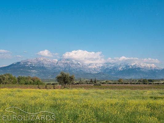 View to the Erymanthos range