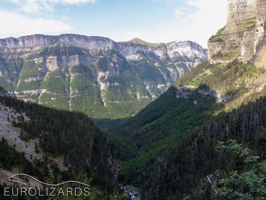Spectacular scenery – but no Iberolacertas