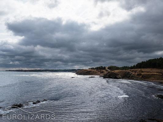Strandzha coast