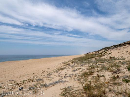 Praia da Fonte do Cortico