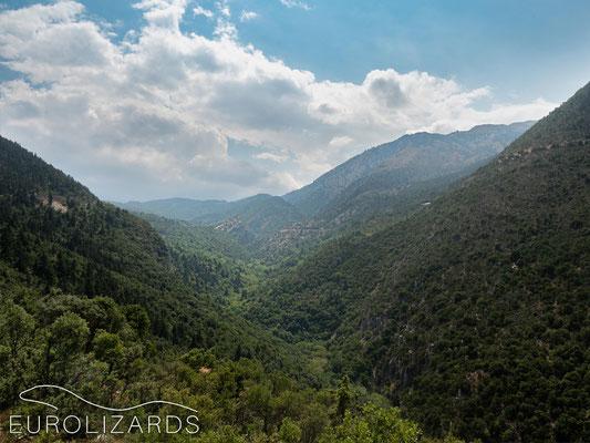 Valley at Kastanitsa
