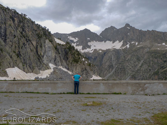 Lizard habitat at Saint-Lary-Soulain: c-c-cold…