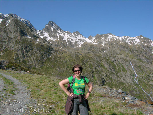 If you want to search for lizards in the Pyrenees, you should put on your hiking boots (towards Port del Rat / 2008)