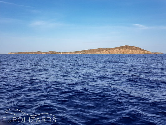 Pergousa Island