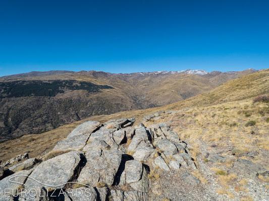 At 2000 meters in Serra Nevada…