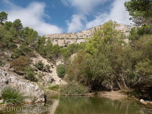 The Río Castril