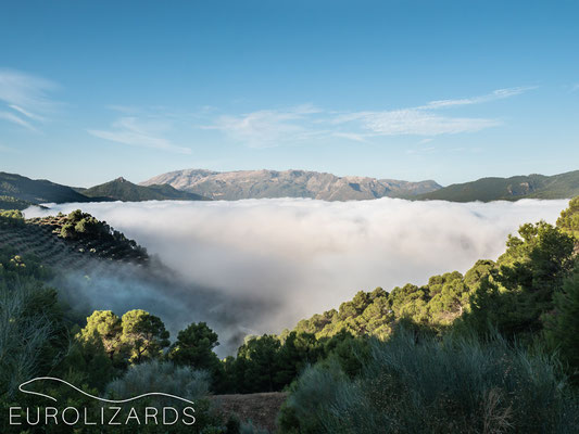 Morning mood in the Sierra de Segura with view to the Sierra de Cazorla in the west