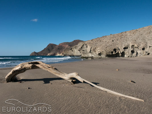 Beach at Cabo de Gata