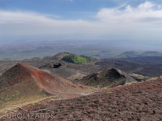 At Mount Etna