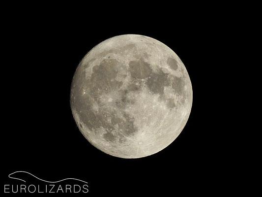 Full moon at Cartagena (13.11.2016)