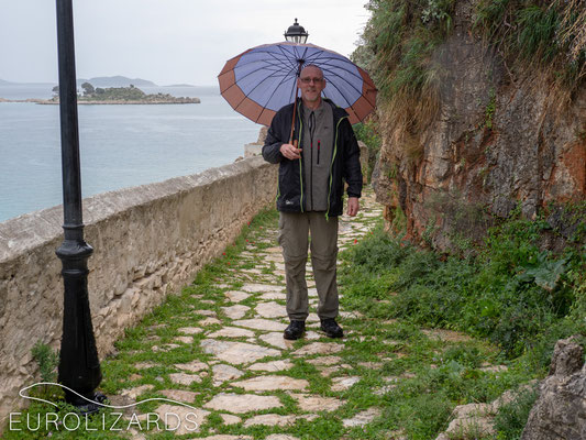 Trevor with fashionable umbrella