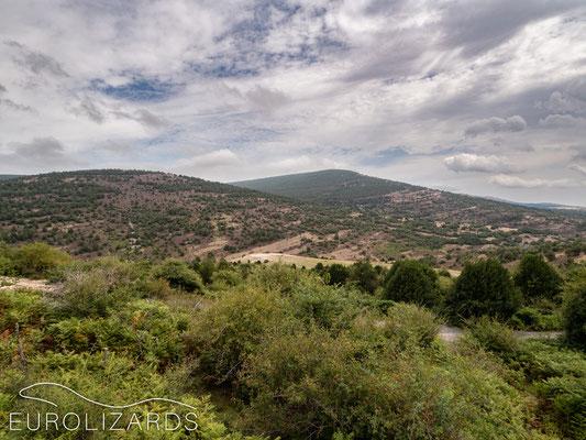 Parque Natural Sierra de Cebollera
