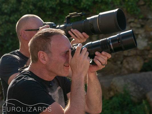 Lizard photography #1