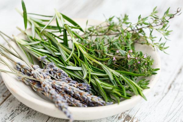 Der besondere Pfiff für jedes Gericht: Frische Kräuter. Sie sind eine gute Alternative zu Salz und enthalten außerdem viel wichtige Vitamine und Pflanzenstoffe