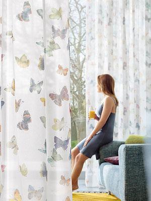 Gardine mit Schmetterlingen, transparente Gardinen in Bruchköbel