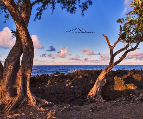 "Bild: ""Palmenfenster"", Nord-Ost-Küste, Maui"