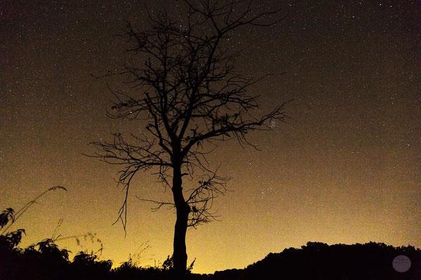 """Bild: Drüpplingsen nachts im November, """"im Sternennebel"""", www.2u-pictureworld.de"""