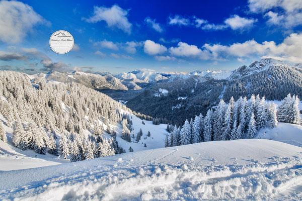 bayrischer Alpenblick