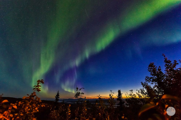 "Bild: aurora borealis over Gobblers Knob on the Dalton Highway, Alaska, USA at the end of August 2016, ""witches dance""; www.2u-pictureworld.de"