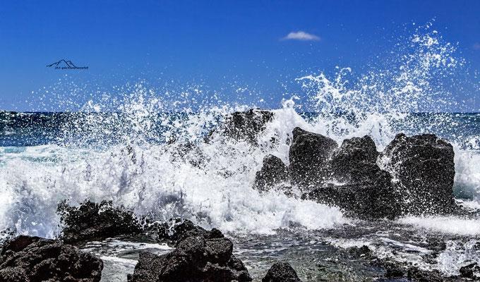 Bild: pazifischer Springbrunnen, Oahu Ostküste