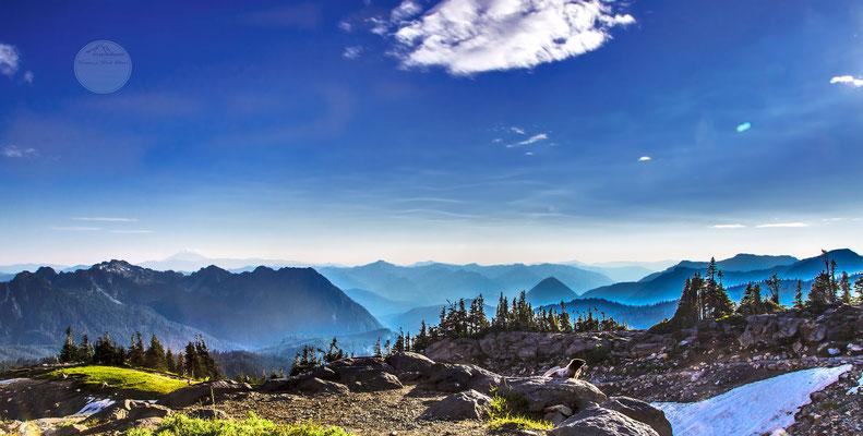 """Bild: Mount Rainier Nationalpark, Murmeltier, """"im abendlichen Rampenlicht"""", www.2u-pictureworld.de"""